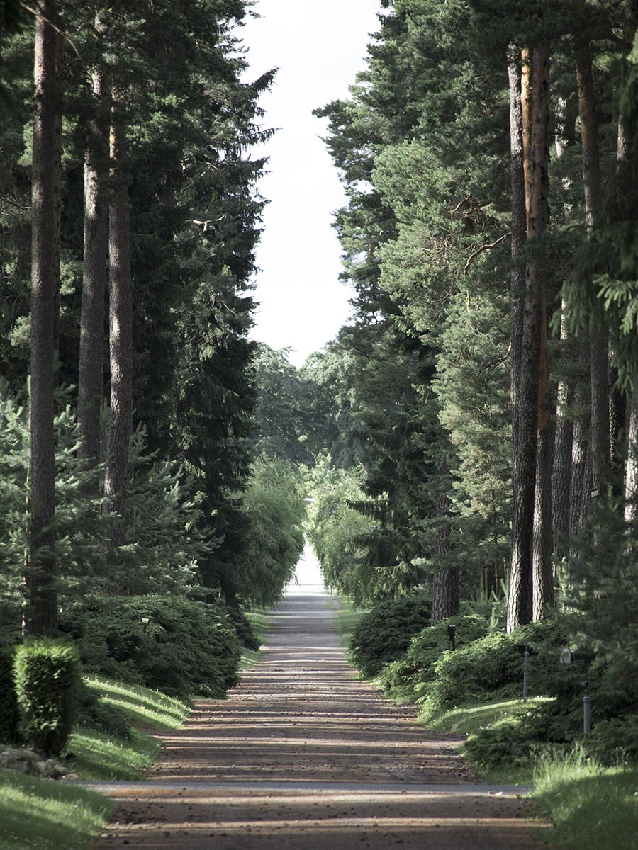 studio_esinam_woodland_cemetery_13