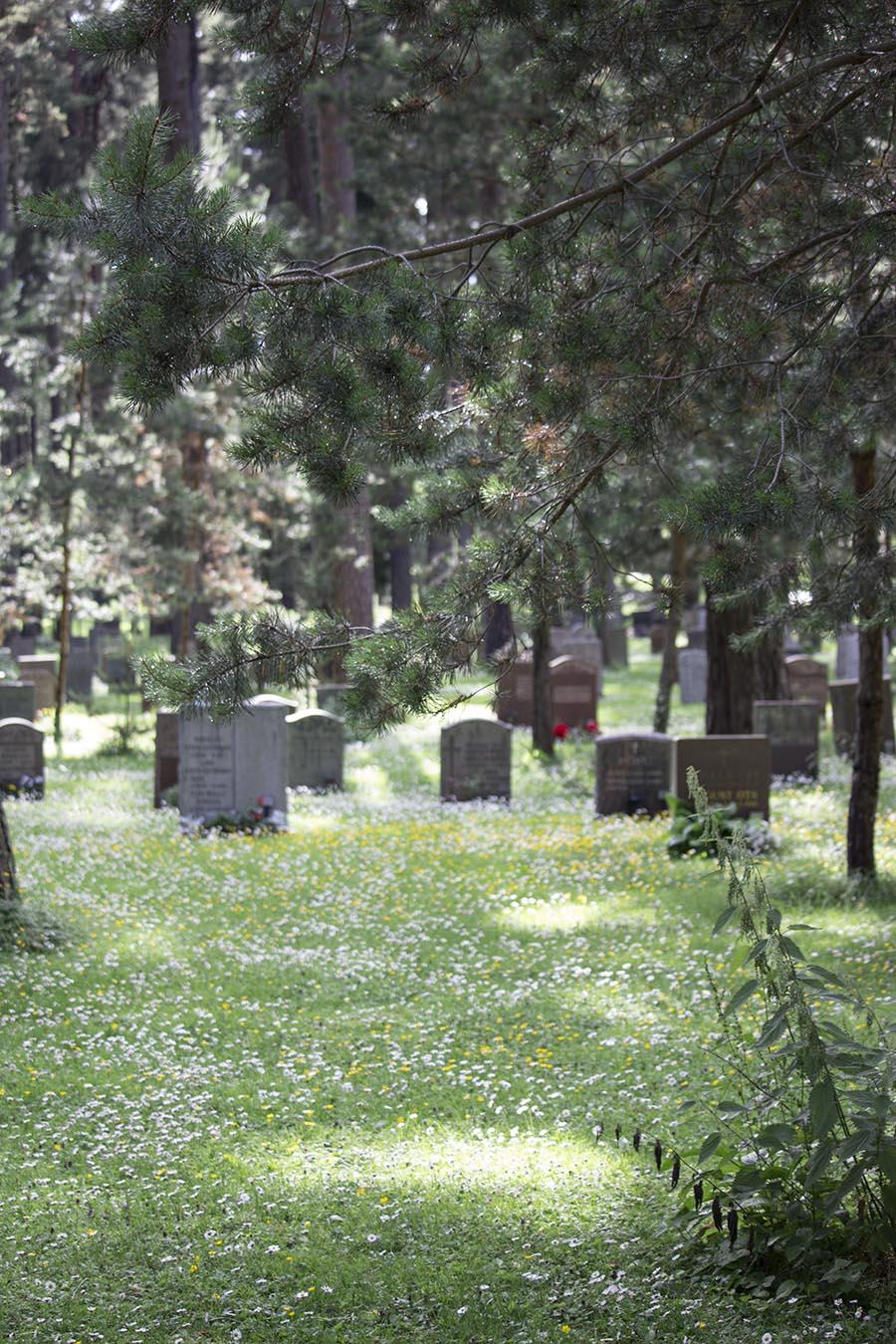 studio_esinam_woodland_cemetery_21