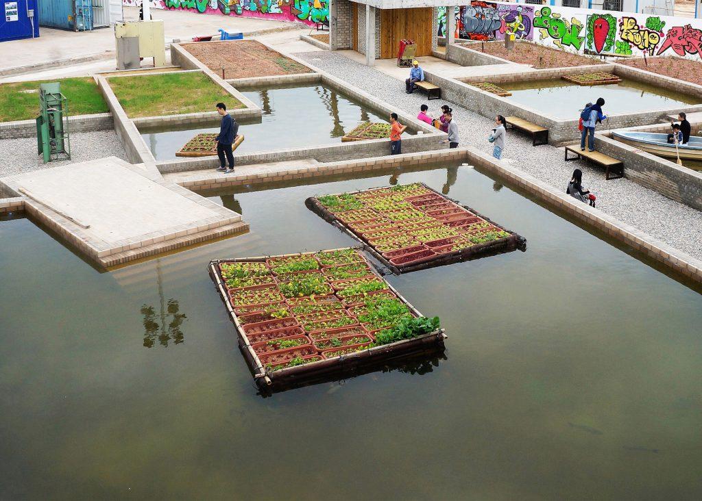 تولید، انرژی و بازیافت: مزارع شناور، در شنزن، چین. از Thomas Chung