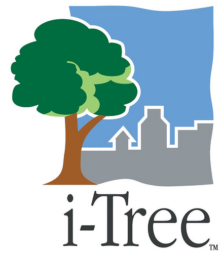 itree-logo